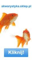 Szafki pod akwarium: